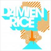 DamienRice